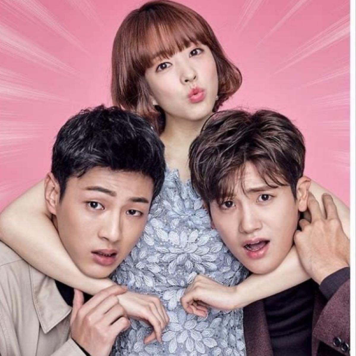 韓国ドラマ 力の強い女 トボンスン 全話DVD8枚組