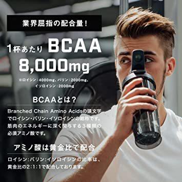 500g TARZA(ターザ) BCAA 8000mg アミノ酸 クエン酸 パウダー マンゴー風味 国産 500g_画像3