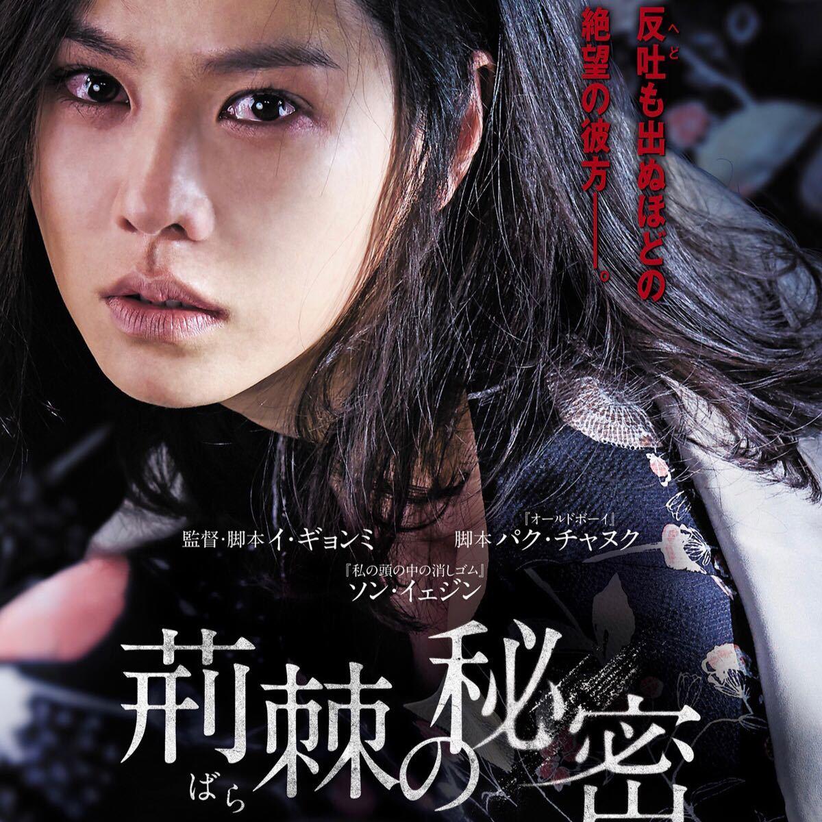 韓国映画  荊棘の秘密  ソン・イェジン  DVD  日本語吹替有り  レーベル有り