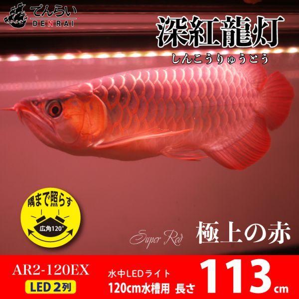 深紅龍灯 アロワナ レッド レベル2 LED 2列 大型水槽 水中照明 アロワナライト アクアリウム 熱帯魚 紅龍 120cm水槽用 でんらい AR2-120EX_画像1