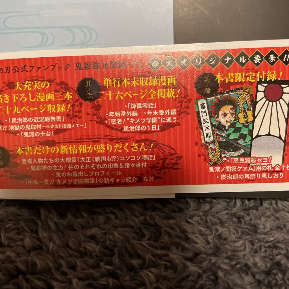 鬼滅の刃公式ファンブック 鬼殺隊見聞 2