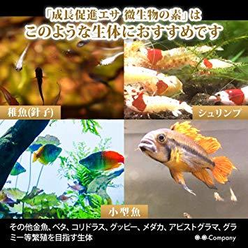OーOー(オーオー)成長促進系エサ 微生物の素 プロテイン入り メダカ 稚魚(針子) 熱帯魚の餌_画像6