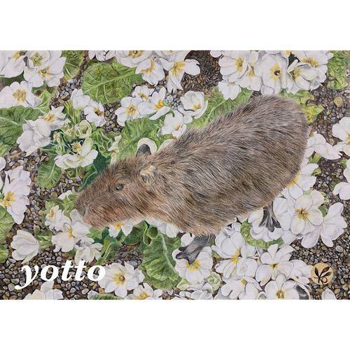 色鉛筆画「 カピバラ 」A4・額付き◇◆手描き◇原画◆動物◇◆yotto_画像1