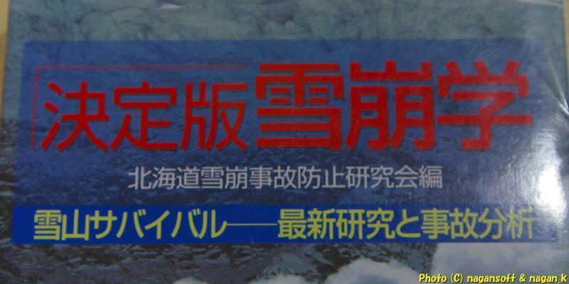 ★即決★ 決定版 雪崩学 雪山サバイバル 最新研究と事故分析 -- 株式会社 山と渓谷社_画像4