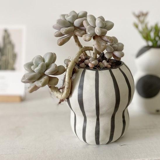 この存在が北欧デザイン●ストライプ フラワーポット 花瓶 バルコニー 多肉植物 盆栽 ポット 植木鉢 インテリア おしゃれ サボテン bb26_画像1