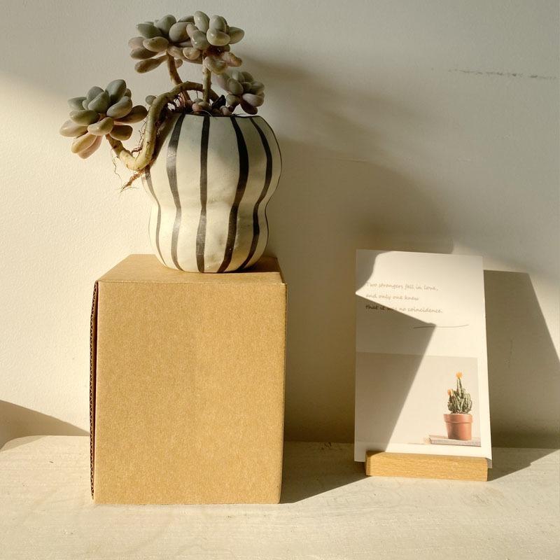 この存在が北欧デザイン●ストライプ フラワーポット 花瓶 バルコニー 多肉植物 盆栽 ポット 植木鉢 インテリア おしゃれ サボテン bb26_画像5