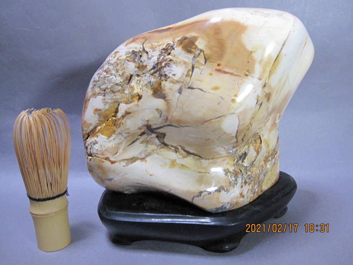 日本産 珪化木 ペトリファイドウッド 化石 置物 3.5Kg(検)アンモナイト 恐竜 隕石 _画像1