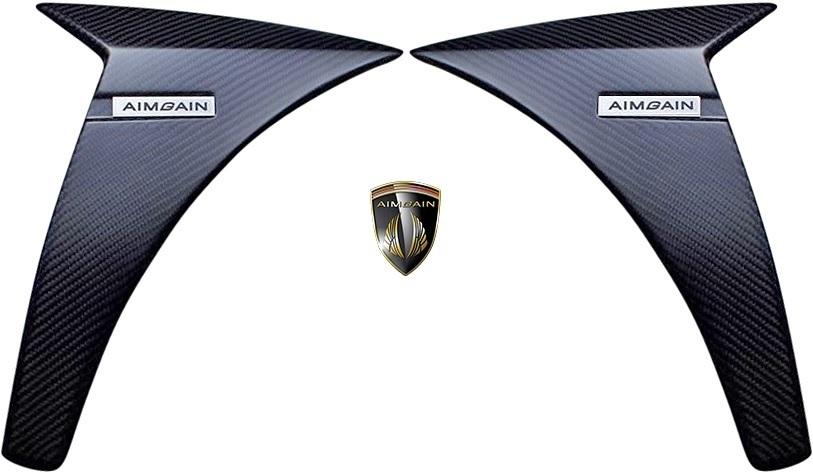 【M's】レクサス 30 IS 前期 F-SPORT (2013.5-2016.9) AIMGAIN 純VIP SPORT フロントフェンダーパネル 左右 // FRP エイムゲイン エアロ_画像1