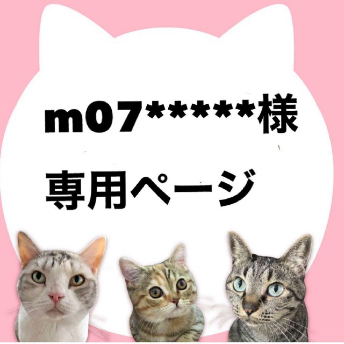 m07様専用ページ/メンズ スウェット(グレー M)