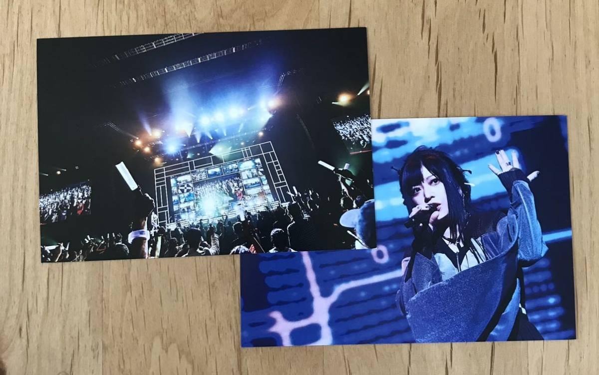 和楽器バンド 鈴華ゆう子 ポストカード 2枚セット_画像1