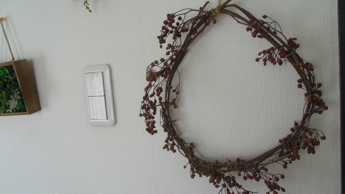 ドライフラワー 実物 ◆バラの実★リース  壁掛け ハンドメイド インテリア雑貨_画像4