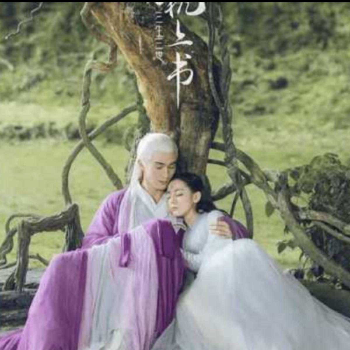 中国ドラマ 夢幻の桃花 37話から最終話まで BluRay ☆画質良☆