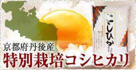 新米 令和3年度産 ギフトに 京都府丹後産特別栽培米コシヒカリ白米5㌔  2980円_画像3