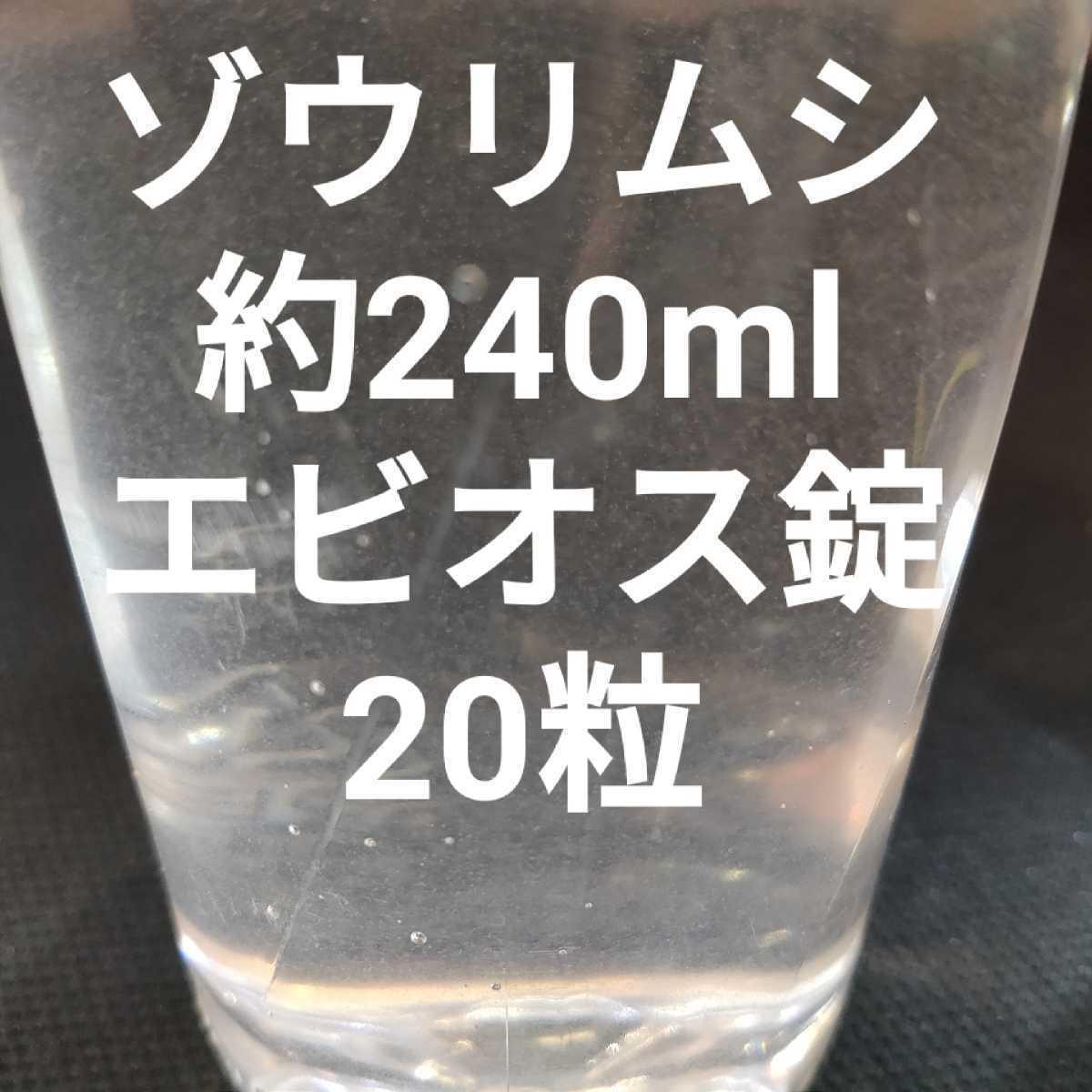 ゾウリムシ 240ml 種水 メダカ 針子 生き餌 エビオス_画像1
