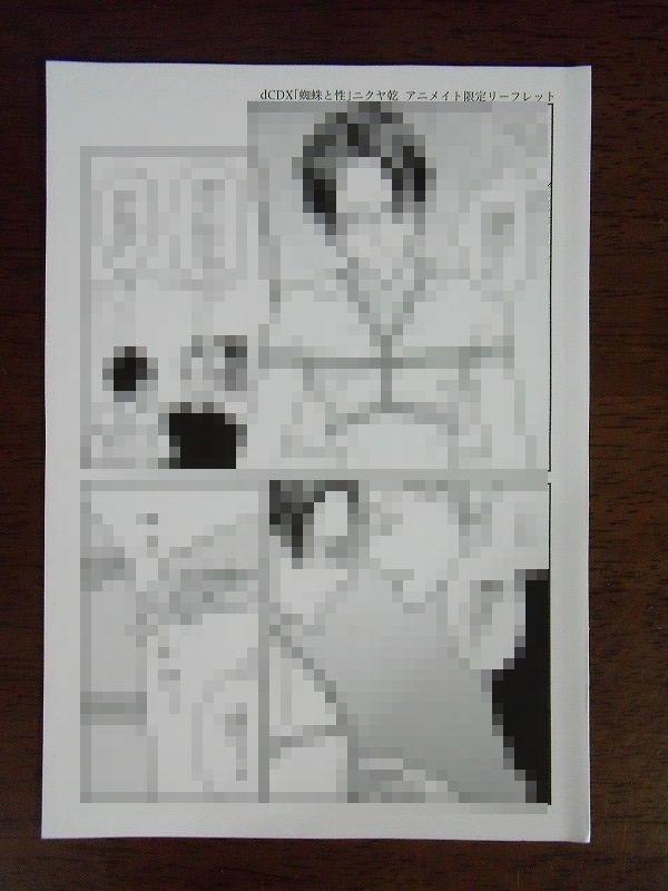 アニメイト特典◆ニクヤ乾『蜘蛛と性』4Pリーフレットのみ ※折れあり_画像1