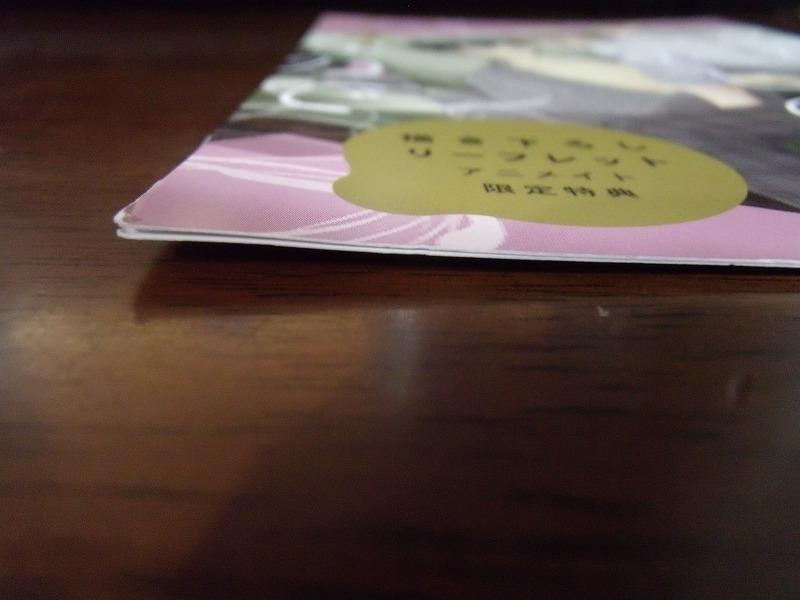 アニメイト特典◆にゑ『あなた、わたしの業なので』4Pリーフレットのみ ※折れあり_画像2
