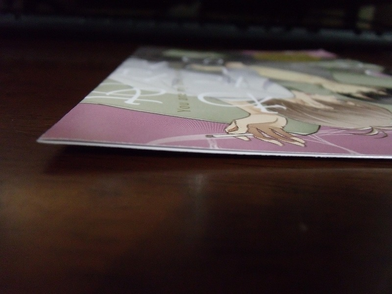 アニメイト特典◆にゑ『あなた、わたしの業なので』4Pリーフレットのみ ※折れあり_画像5