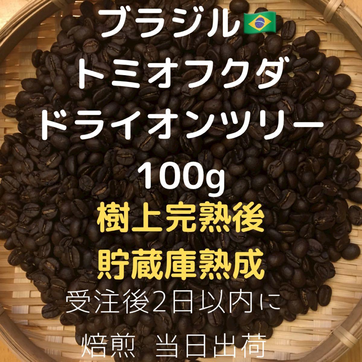 自家焙煎 ブラジル トミオフクダ ドライオンツリー100g(豆又は粉)匿名配送
