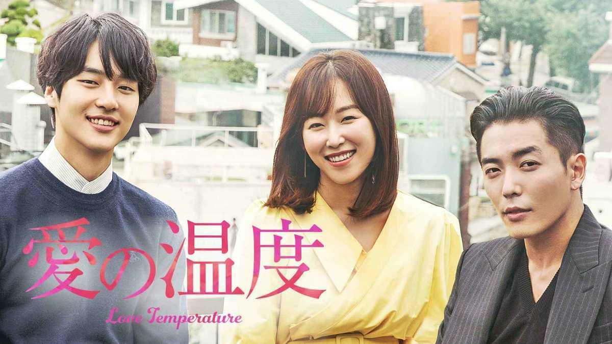 韓国ドラマ 愛の温度 DVD全話
