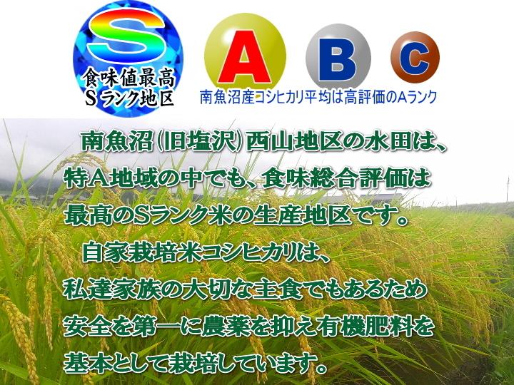南魚沼産コシヒカリ乾式無洗米1kg(ネコポス便)令和2年産_画像4