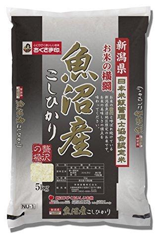 5kg 【精米】新潟県産 お米の横綱 魚沼産コシヒカリ 5kg 令和2年産_画像1