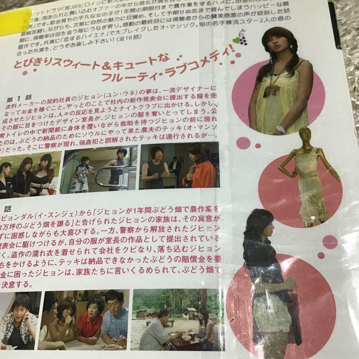 ぶどう畑のあの男 ★全巻セット DVD 韓国ドラマ ★レンタル落ち★ユンウネ★オマンソク