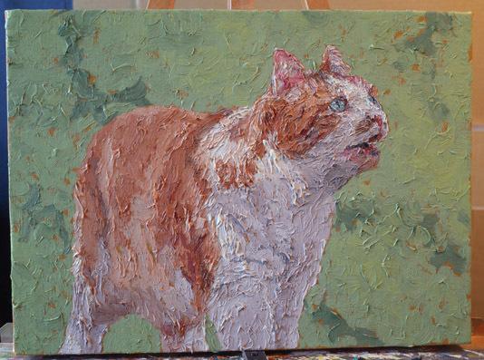 Katze Katze F4 # 379 Malerei & Ölgemälde & Tiermalerei