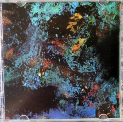 CD★日本盤■ホットハウス・フラワーズ(Hothouse Flowers) ■ホーム/HOME