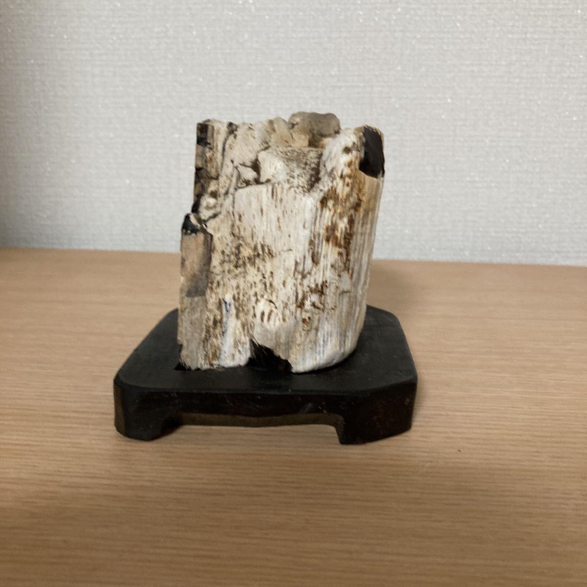 ■水石 ■鑑賞石 ■天然石■珪化木■A-2_画像3