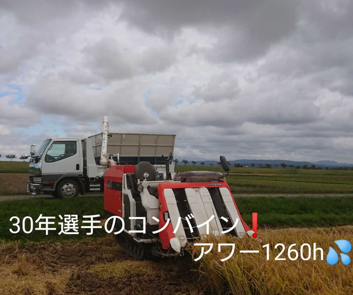 自然栽培米お米の旨みたっぷり 氷温熟成米 ひとめぼれ 令和2年産 山形県産 庄内米 玄米 5kg 送料無料_画像8