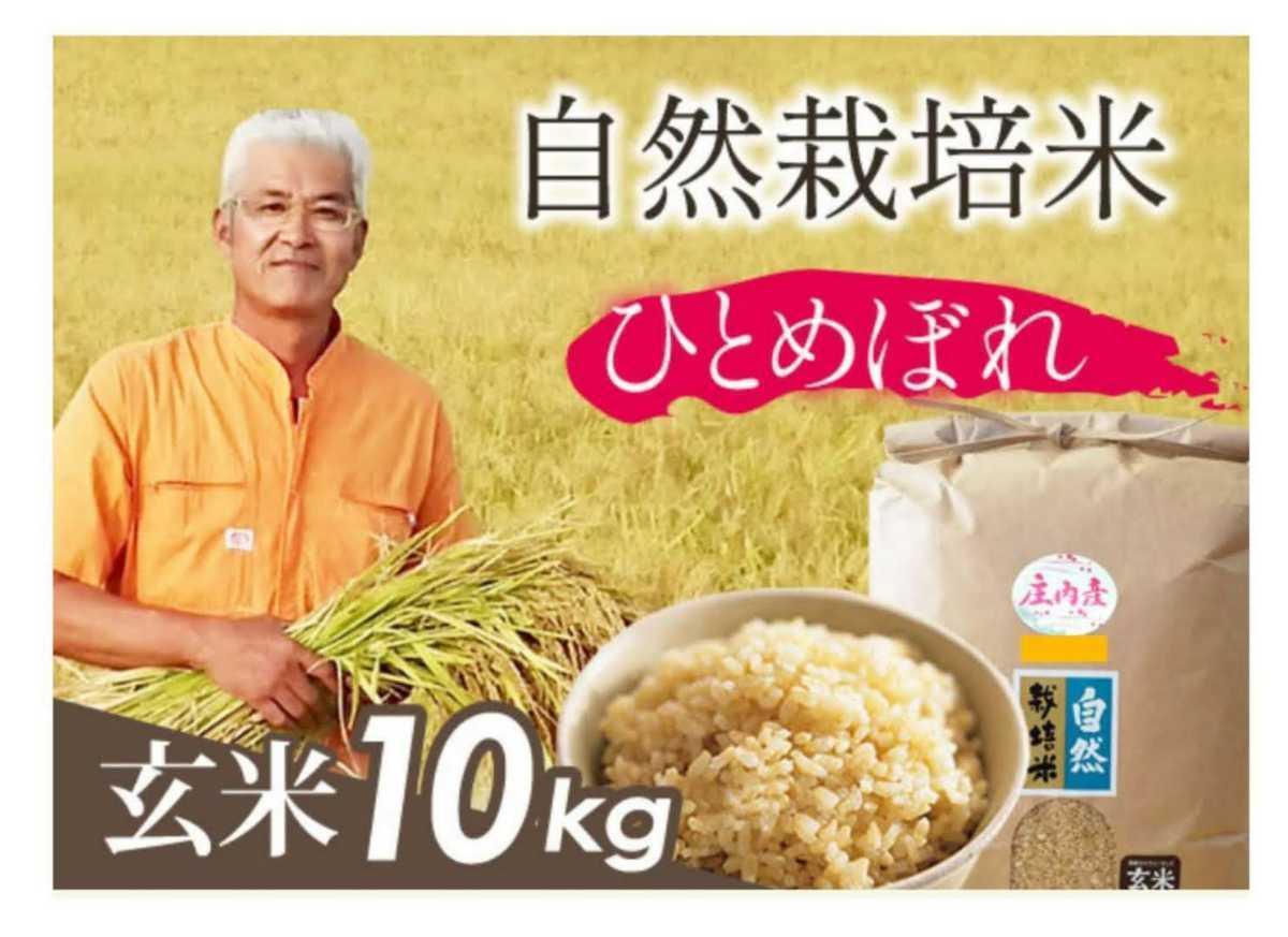自然栽培お米の旨みたっぷり 氷温熟成米 ひとめぼれ 令和2年産 山形県産 庄内米 玄米 10kg(5kg×2袋) 送料無料_画像2