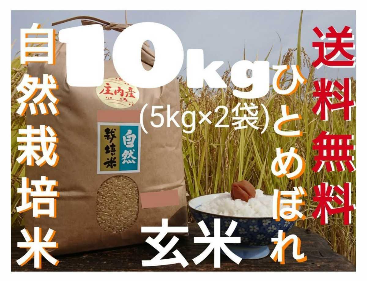 自然栽培お米の旨みたっぷり 氷温熟成米 ひとめぼれ 令和2年産 山形県産 庄内米 玄米 10kg(5kg×2袋) 送料無料_画像1