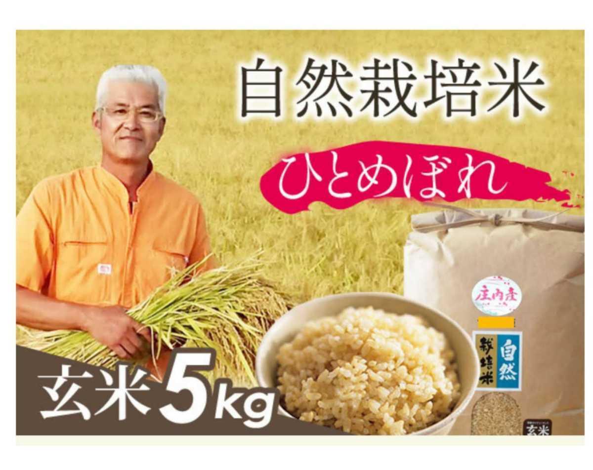自然栽培米お米の旨みたっぷり 氷温熟成米 ひとめぼれ 令和2年産 山形県産 庄内米 玄米 5kg 送料無料_画像2