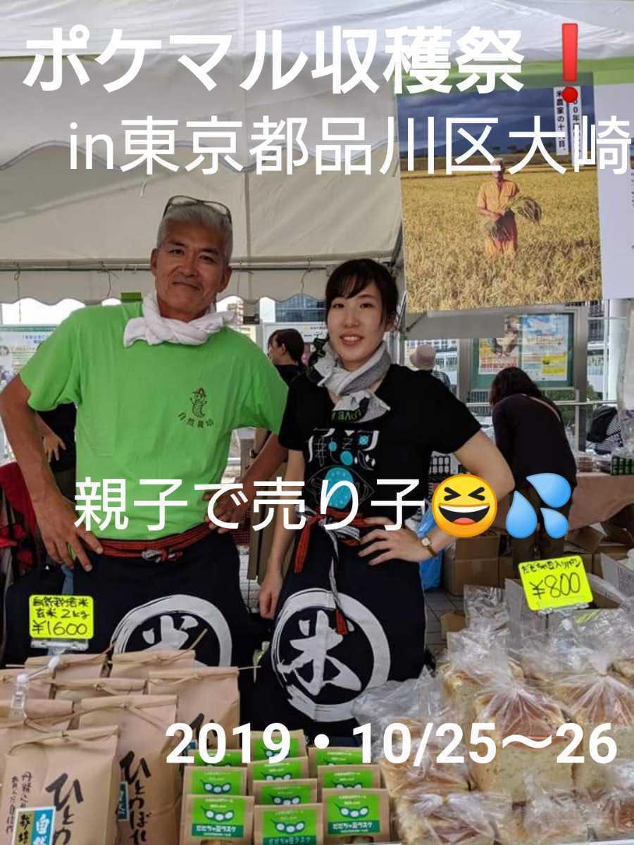自然栽培お米の旨みたっぷり 氷温熟成米 ひとめぼれ 令和2年産 山形県産 庄内米 玄米 10kg(5kg×2袋) 送料無料_画像9