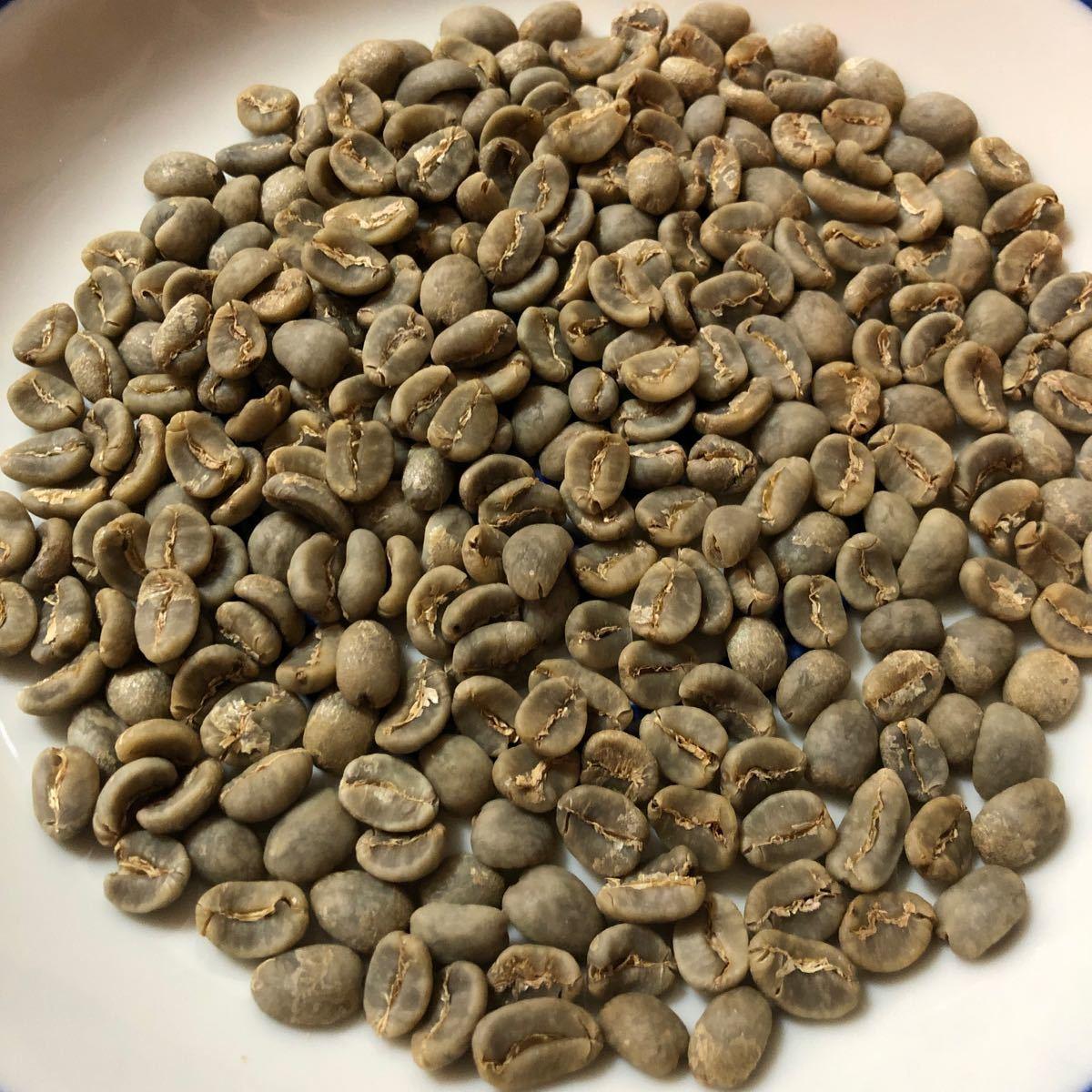 コーヒー 生豆 インドネシア クイーンスマトラ 500g