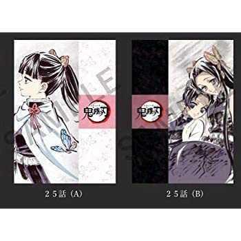 鬼滅の刃 栗花落カナヲ 胡蝶しのぶ 胡蝶カナエ アイキャッチ クリアファイル 25話 2枚セット