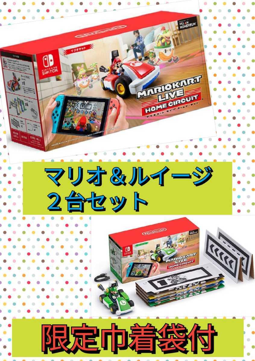 マリオカート ライブ ホームサーキット マリオとルイージの2台セット