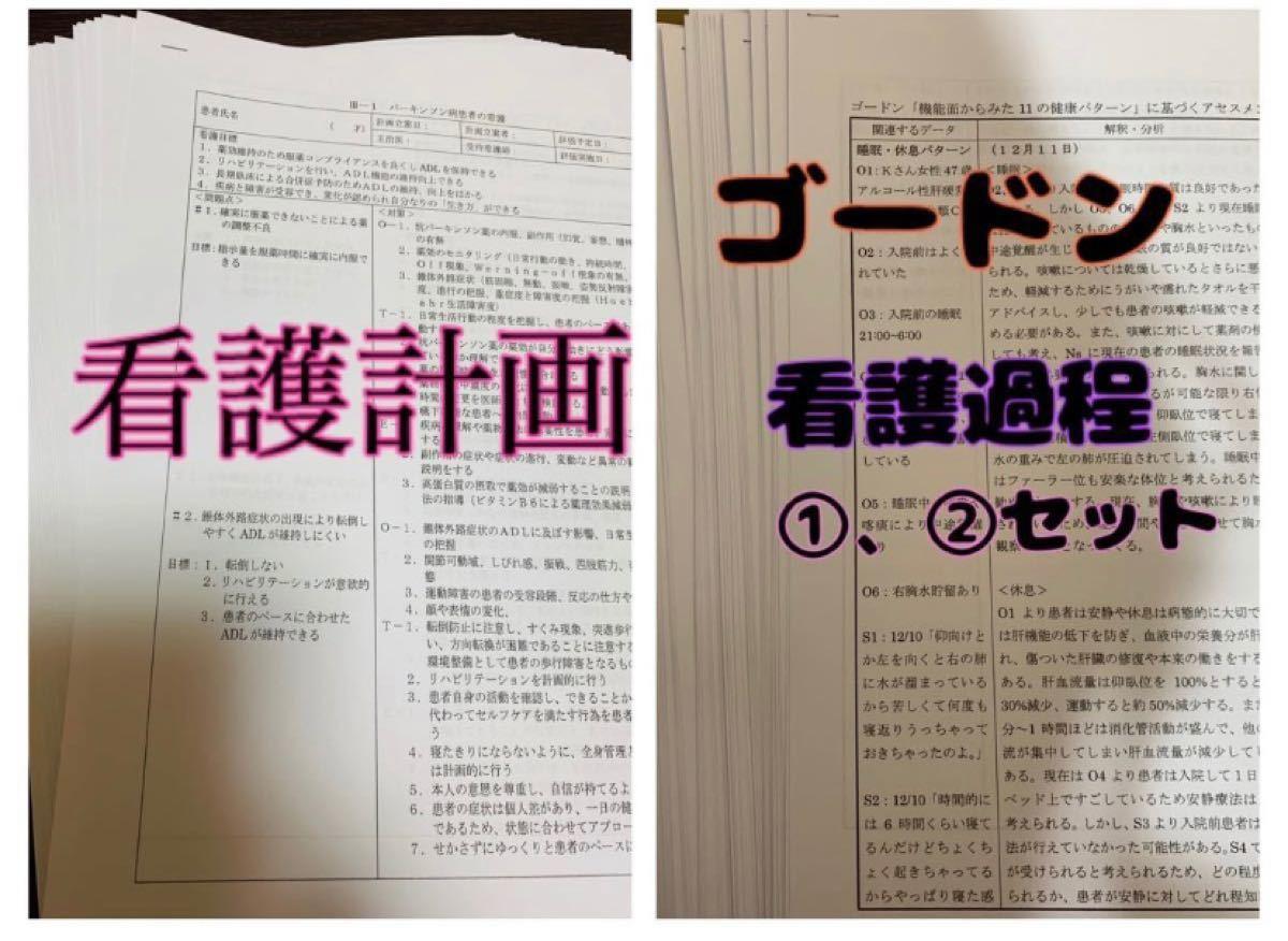 看護計画 ★ ゴードン 看護過程 セット (^^)