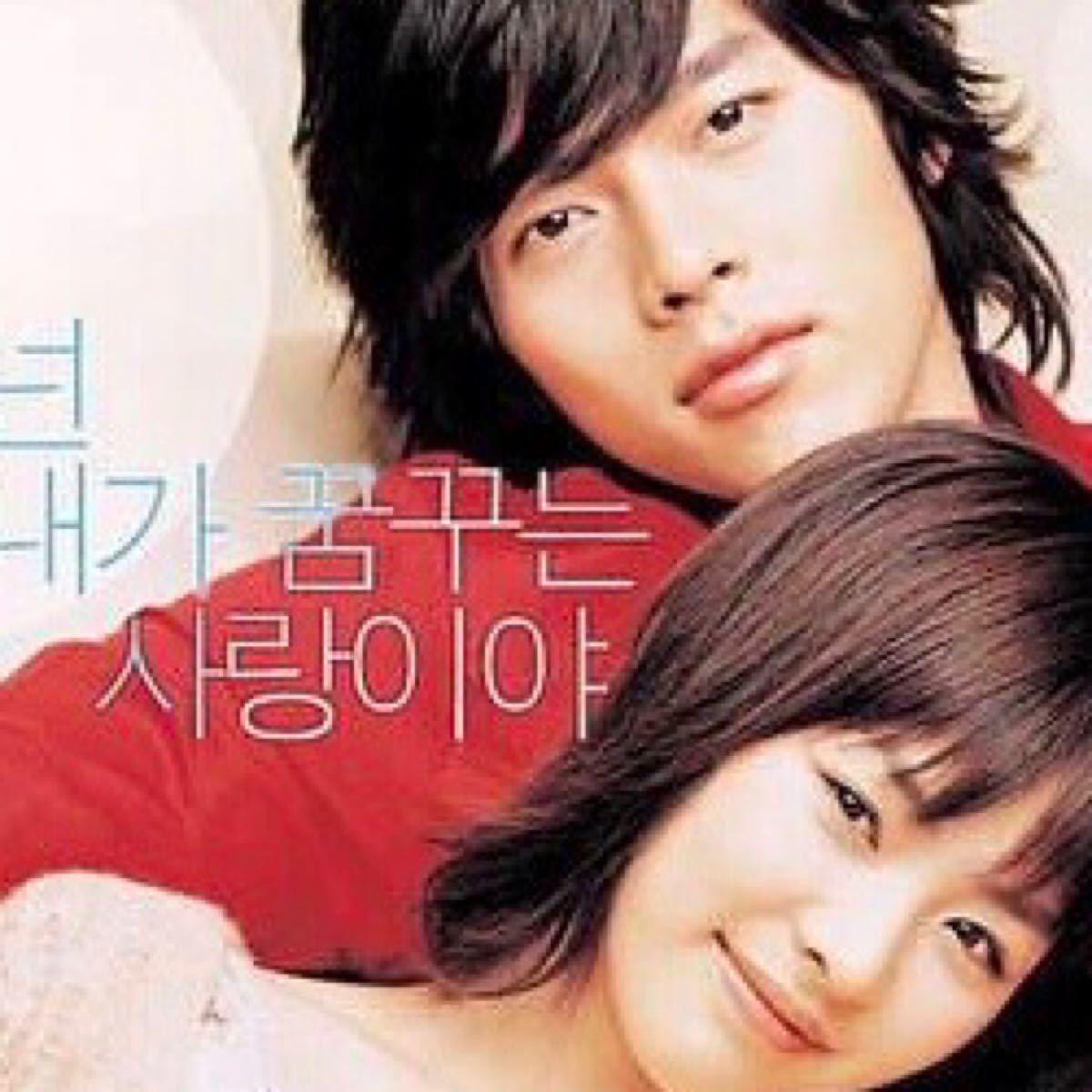 韓国映画  百万長者の初恋  ヒョンビン  DVD  日本語吹替有り  レーベル有り