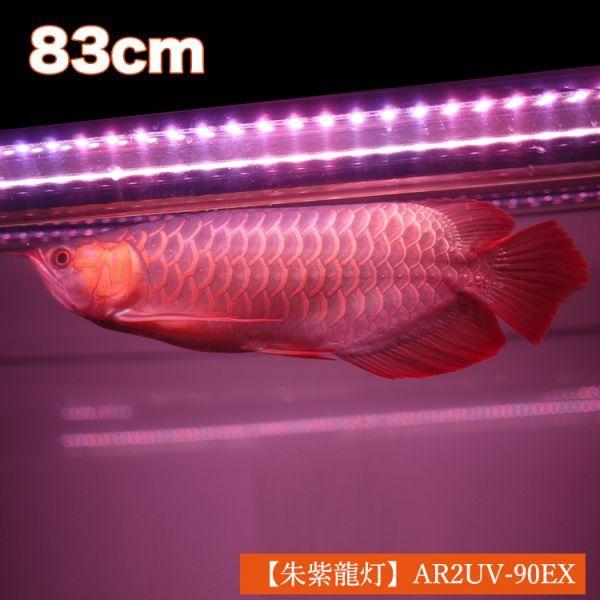 朱紫龍灯 アロワナ LED 2列 UV リバイブソード ライト 色あせ 色揚げ 大型水槽 水中照明 アクアリウム 紅龍 金龍 90cm水槽用 AR2UV-90EX_画像2