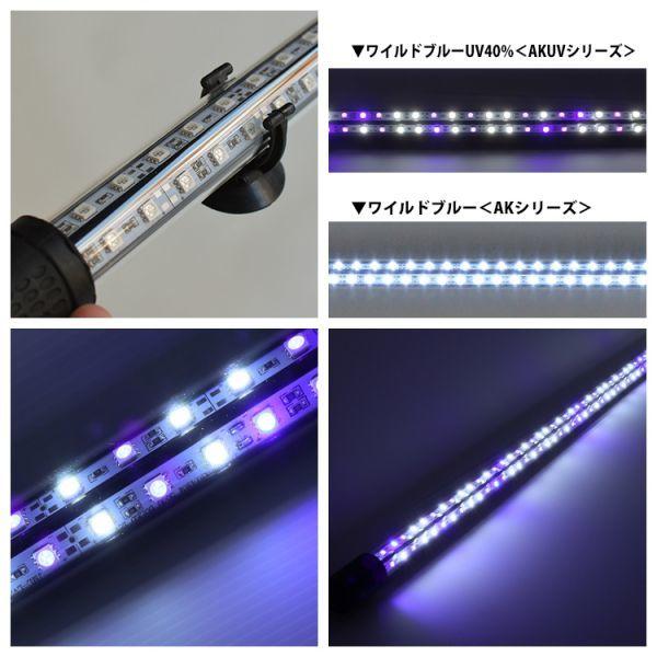 藍紫龍灯 アロワナ LED 2列 UV 紫外線40% ライト 色あせ 色揚げ 大型水槽 水中照明 アクアリウム 藍底 金龍 150cm水槽用 AKUV-150EX_画像4
