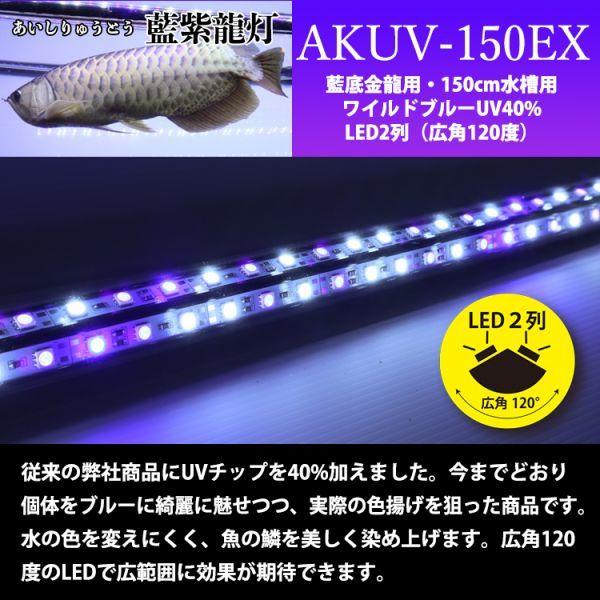 藍紫龍灯 アロワナ LED 2列 UV 紫外線40% ライト 色あせ 色揚げ 大型水槽 水中照明 アクアリウム 藍底 金龍 150cm水槽用 AKUV-150EX_画像3