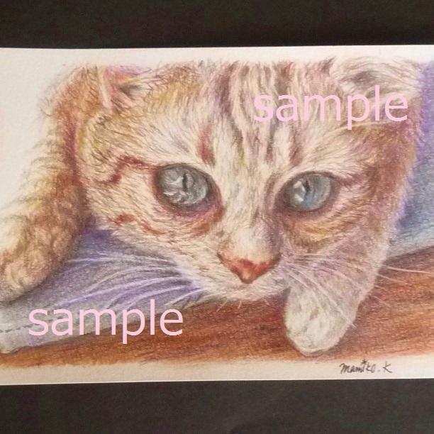原画★猫 イラスト 色鉛筆 水彩 手描き 作品 ネコ ねこ インテリア ポストカード 絵画 動物_画像3
