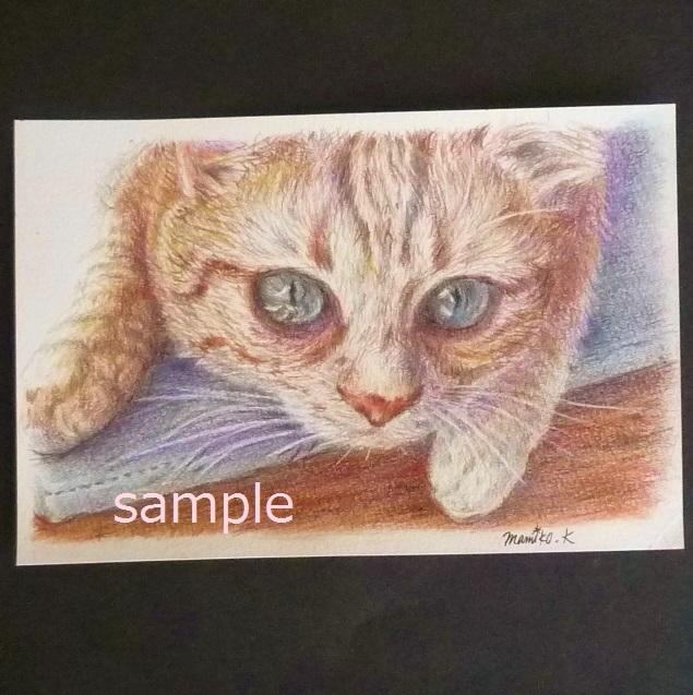 原画★猫 イラスト 色鉛筆 水彩 手描き 作品 ネコ ねこ インテリア ポストカード 絵画 動物_画像1