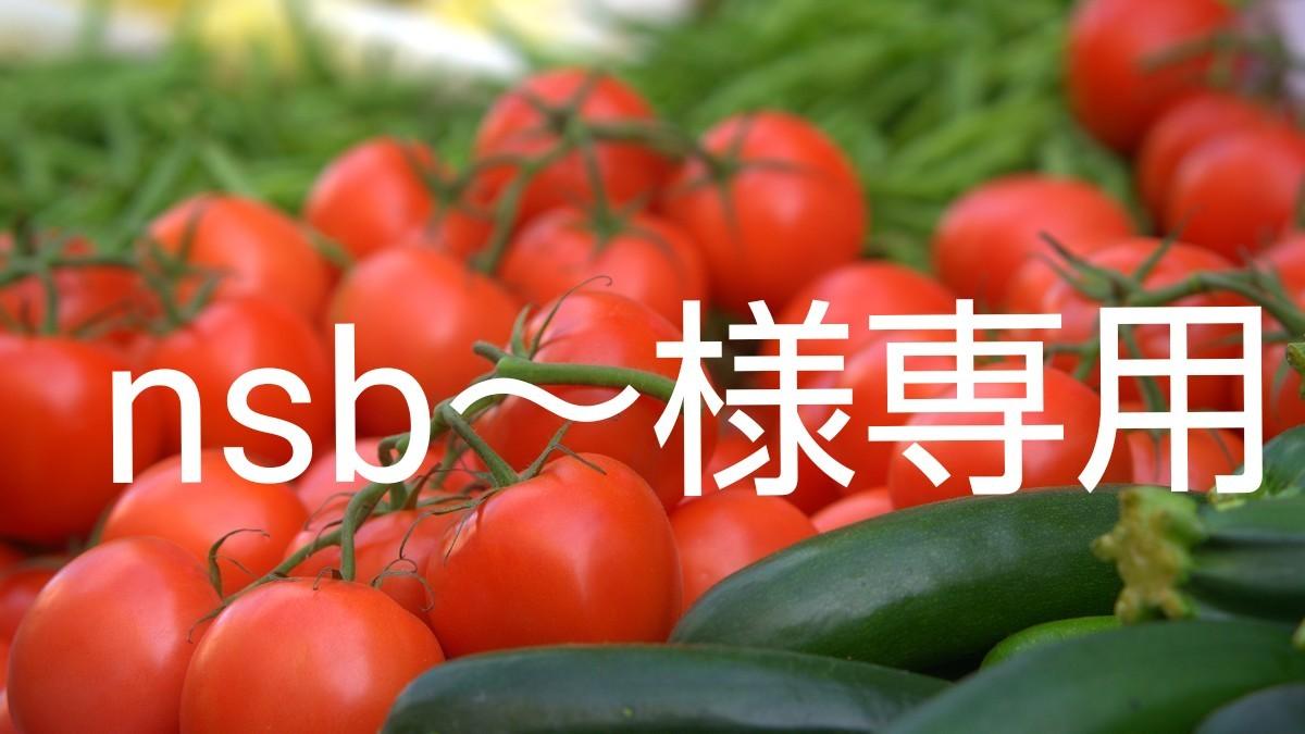 nsb~様専用