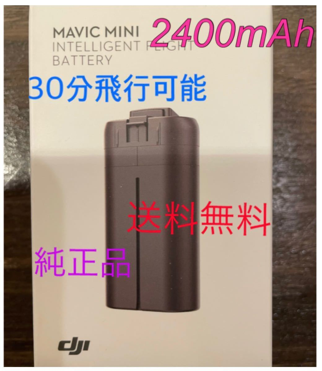 Mavic mini 、DJI mini2 用 2400mAh 海外バッテリー