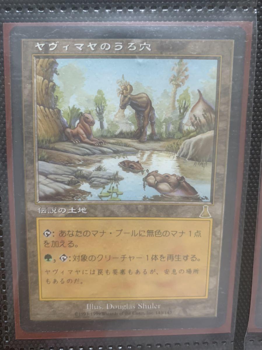 MTG ヤヴィマヤのうろ穴 日本語 再録禁止_画像1