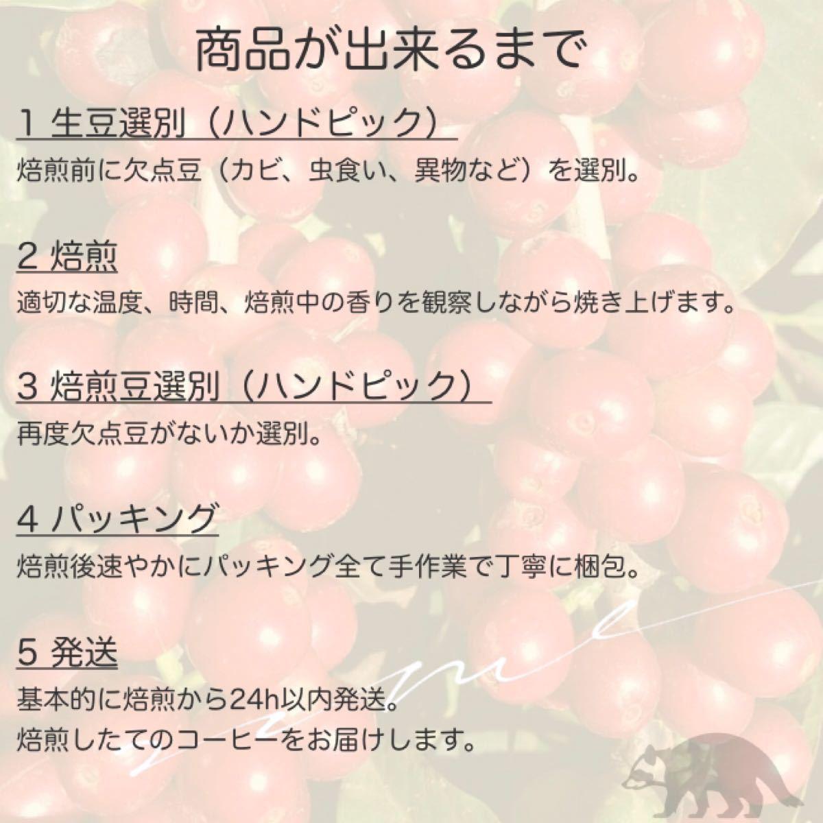 シングルオリジン 【ゲイシャ100% 】(200g)コーヒー豆