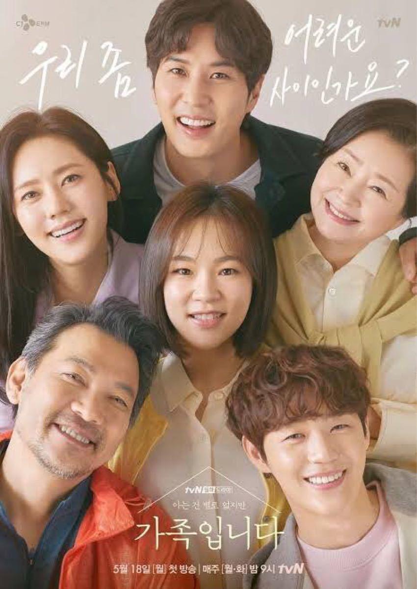 韓国ドラマ (知ってることはあまりないけれど)家族です Blu-ray レーベル印刷なし