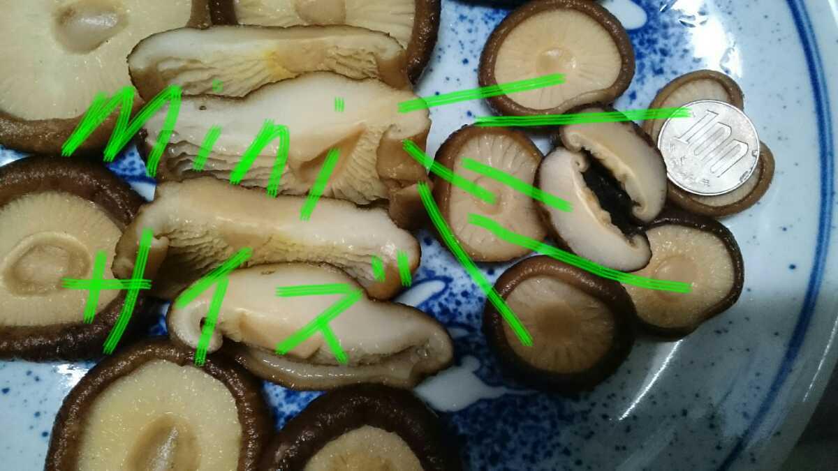 【国産自然栽培・美味しさ凝縮】【徳用・即決・送料無料】ミニサイズ 不揃い 完全乾燥椎茸 170g 香信 無農薬無添加天然物 2020年新物_画像5